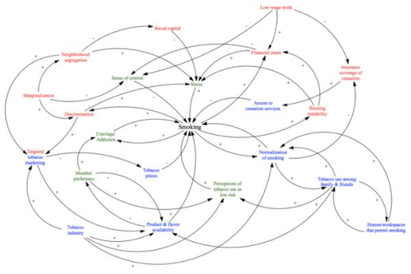 University of North Carolina at Chapel Hill smoking model using systems science